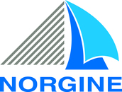 Logo medium norgine