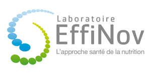 Logo large effinov
